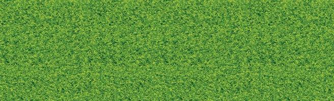 terrain de football classique réaliste avec revêtement vert bicolore vecteur