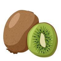 kiwi et tranche de fruits entiers vecteur