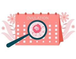 illustration de concept d'ovulation. fertilité féminine. Devenir enceinte. vecteur