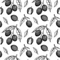 modèle sans couture dessiné à la main avec des fruits, des branches et des feuilles de litchi. illustration vectorielle dans le style de croquis botanique vecteur