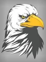 Tête de faucon faucon aigle à tête blanche, dessin d'illustration de vecteur de dessin animé