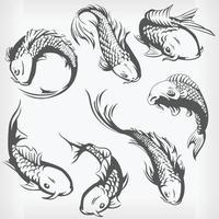 Silhouette natation carpe japonaise, poisson koi, dessin vectoriel au pochoir