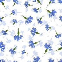 modèle sans couture de vecteur avec bleuets bleus sur fond blanc.