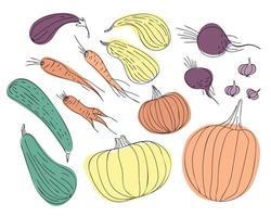 ensemble de légumes dautomne dessinés en dessin au trait vecteur
