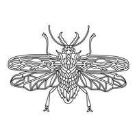 Livre de coloriage de bûcheron brésilien coléoptère. illustration vectorielle linéaire de bûcheron coléoptère. livre de coloriage anti-stress pour adultes et enfants. livre de coloriage doodle dessiné à la main. vecteur