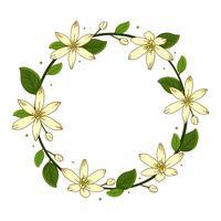 Couronne de jasmin fleur fond Illustration vecteur