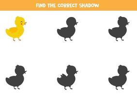 trouver la bonne ombre de canard mignon de bande dessinée. vecteur