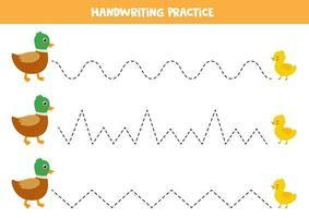 pratiquer les compétences d'écriture. canard de dessin animé mignon et canard jaune. feuille de travail éducative pour les enfants. vecteur
