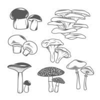 ensemble d & # 39; illustrations de champignons vecteur