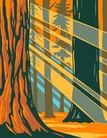 La lumière du soleil à travers les séquoias géants du parc national de Sequoia vecteur