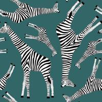 fond bleu foncé avec des girafes qui veulent être des zèbres vecteur