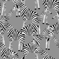 fond gris avec des girafes qui veulent être des zèbres vecteur