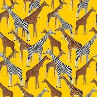 fond bleu doré avec des girafes qui veulent être des zèbres vecteur