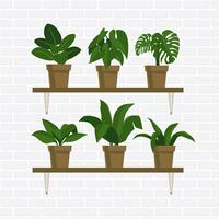 Plantes en pot vecteur