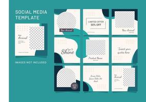 modèle de publication de médias sociaux puzzle mode femmes vecteur