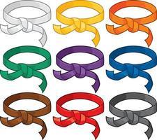 système de classement des ceintures d'arts martiaux vecteur