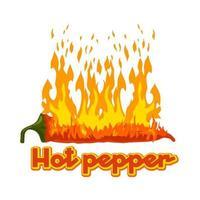 le piment brûle avec le feu. logo vectoriel isolé. illustration vectorielle