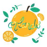 Oranges mignons avec lettrage Abput Orlando City vecteur