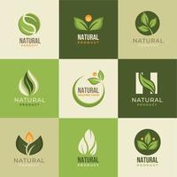 produit naturel bio et frais vecteur