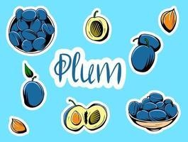 ensemble d'illustrations vectorielles représentant des prunes. vecteur
