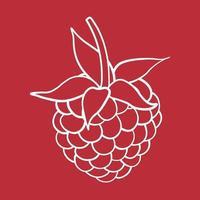 illustration de fruits sucrés framboise pour le web isolé sur fond blanc vecteur