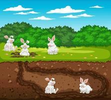 terrier animal souterrain avec famille de lapins vecteur