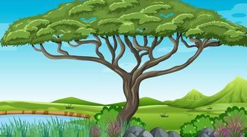 fond de forêt en plein air nature vecteur