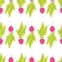 radis frais sur fond blanc. modèle sans couture de vecteur dans un style plat