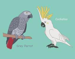 illustrations de conception de vecteur de style dessiné main perroquet mignon.
