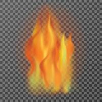 flammes de feu réalistes isolés sur fond transparent, illutration de vecteur