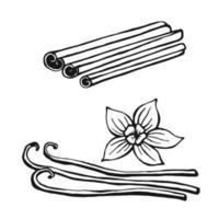 cannelle dessiné à la main, vanille. éléments de conception isolés sur blanc. icônes de cuisine. illustration vectorielle vecteur