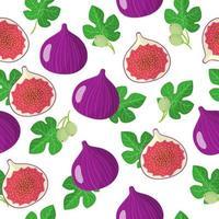 Modèle sans couture de dessin animé de vecteur avec ficus carica ou figues fruits exotiques, fleurs et feuilles sur fond blanc