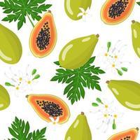 Modèle sans couture de dessin animé de vecteur avec carica papaye ou melon arbre fruits exotiques, fleurs et feuilles sur fond blanc