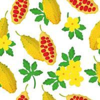 Modèle sans couture de dessin animé de vecteur avec momordica ou fruits exotiques de melon amer, fleurs et feuilles sur fond blanc