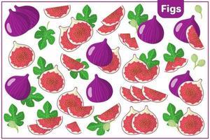 ensemble d'illustrations de dessin animé de vecteur avec des figues fruits exotiques, des fleurs et des feuilles isolés sur fond blanc