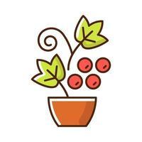 Icône de couleur rvb d'arbustes et de vignes de baies vecteur