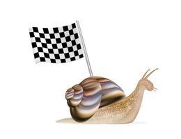 escargot avec drapeau de course vecteur
