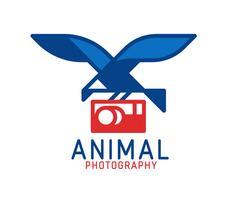 Logo du photographe vecteur