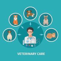 affiche plate de soins vétérinaires vecteur
