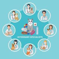 affiche plate de spécialistes vétérinaires vecteur