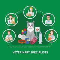 composition à plat de spécialistes vétérinaires vecteur