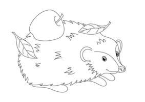 livre de coloriage pour enfants avec un hérisson vecteur