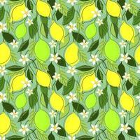 fond de menthe transparente avec des branches de citron vecteur
