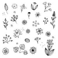 croquis de broderie florale monochrome. croquis de motifs botaniques dessinés à la main. griffonnage, fleurs de jardin, feuilles, branches. texture de vecteur moderne pour la mode, le tissu, l'impression rétro.