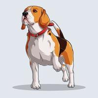 Chien beagle mignon illustré avec des ombres colorées et des lumières isolées sur fond blanc vecteur