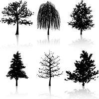 Silhouettes d'arbres vecteur