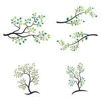 conception d'illustration vectorielle branche d'arbre vecteur