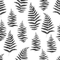 motif graphique botanique de feuilles de fougère noire sur fond blanc. fond idéal pour la marque, l'emballage, le tissu et le textile, le papier d'emballage. vecteur