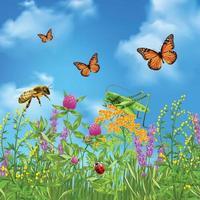 illustration vectorielle réaliste insectes été vecteur
