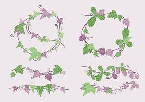 Illustration vectorielle de vigne verte et violette lierre vigne
